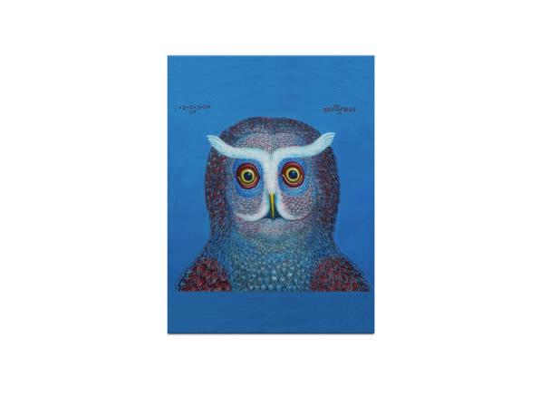 Owl by Tamas Galambos