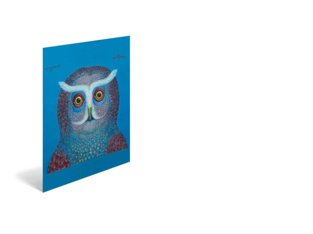 Owl by Tamas Galambos - Poster