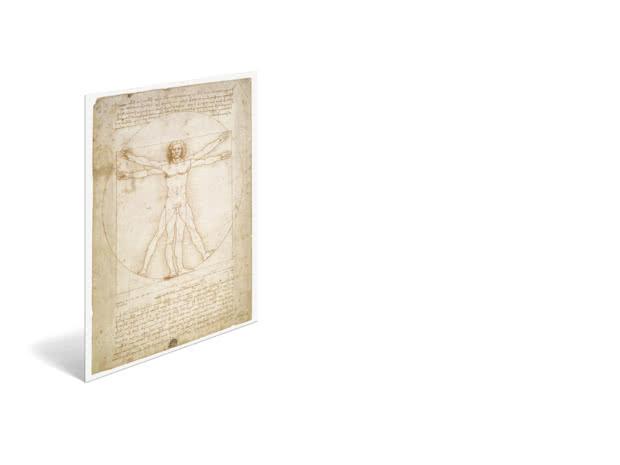 Vitruvian Man by Leonardo da Vinci - Poster