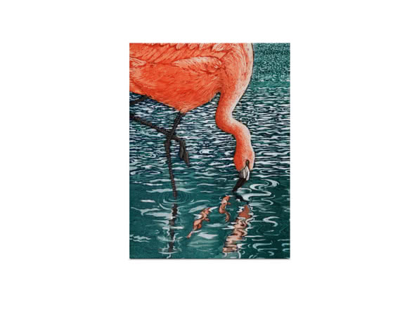 Flamenco Flamingo by Jane Peart