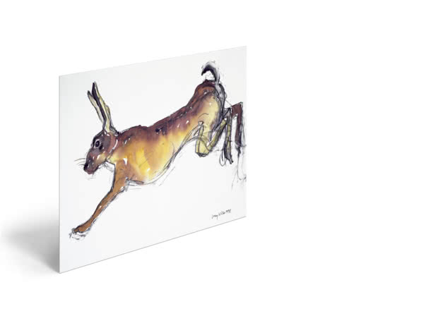 Jumping Hare by Lucy Willis - Poster