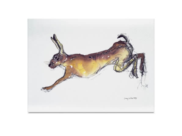 Jumping Hare by Lucy Willis